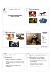 Eto_BEA_Conceitos_aplicados_Noturno.pdf