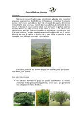 especialidade de arbustos.docx